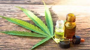 Cannabis: solo hace falta voluntad y visión